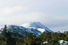 Ra do ³ de Babia GÃ - ` do pico do ` s do diabo do ` de Diablak, que é igualmente o pico o mais alto desta parte das montanhas Ca imagem de stock