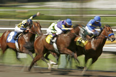 Raça de cavalo do borrão de movimento Fotos de Stock