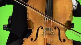 Raakt de cello dichte omhooggaande boog de koorden Het groene scherm stock video