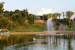 Raanana公园结构树和湖 免版税库存图片
