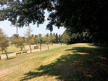 Raanana Openbaar Park Royalty-vrije Stock Afbeeldingen