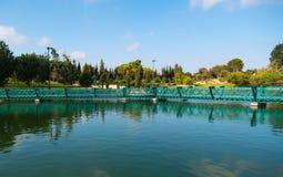 Raanana Park lake Royalty Free Stock Images