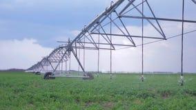 Raapzaadgebied met irrigatiesysteem, platteland met landbouwgrond op achtergrond van hemel stock video
