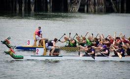 Raças de barco em Victoria, Columbia Britânica do dragão Imagens de Stock
