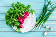 Rabanete e cebolas frescas da mola sobre a tabela de madeira rústica Fotografia de Stock Royalty Free