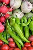Rabanete e pimenta Imagem de Stock