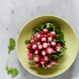 Rabanete novo em um bolo Vegetais frescos da mola Salada Alimento saudável Fotografia de Stock