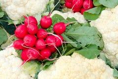 Rabanetes e couve-flor Foto de Stock