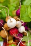Rabanetes orgânicos no mercado dos alimentos frescos Imagens de Stock Royalty Free