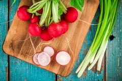 Rabanetes orgânicos frescos brilhantes com fatias e cebolas verdes na placa de corte Imagens de Stock