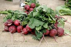 Rabanetes vermelhos em uma tabela em um mercado dos fazendeiros com a Fotos de Stock