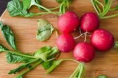 Rabanetes vermelhos no círculo com uns grupos dos verdes Foto de Stock Royalty Free