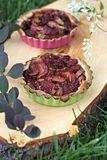 Rabarbarowy i Malinowy tarta zdjęcie royalty free