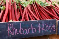 Rabarber bij de Markt van de Landbouwer Stock Fotografie