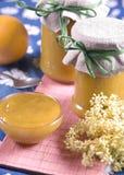 Rabarber en oranje jam Royalty-vrije Stock Foto's