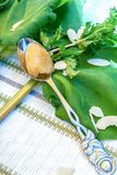 Rabarberefterrätt med mintkaramellen Royaltyfri Fotografi