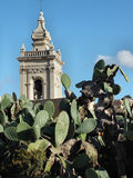 Rabat Cathedtal Tower rising above a prickly pear cactus Royalty Free Stock Photos