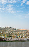 Rabat muslim cemetery. View from Kasbah of the Udayas. Morocco. Royalty Free Stock Photos