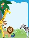 rabatowa dżungla Fotografia Stock