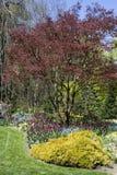 rabatowa wiosna Obrazy Royalty Free
