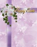 rabatowe Easter bluszcza orchidee Zdjęcia Stock