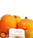 rabatowy dekoracyjny wakacyjny dziękczynienie Zdjęcia Stock