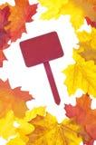 rabatowy jesień liść Obrazy Stock