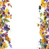 rabatowy kwiatu ziele liść ilustracja wektor