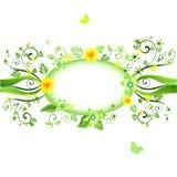 rabatowy ornamental Fotografia Stock