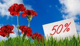 Rabatt für Verkauf, 50-Prozent-Rabatt, schöne Blumengartennelke in der Grasnahaufnahme Lizenzfreie Stockfotografie