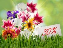 Rabatt für Verkauf, 30-Prozent-Rabatt, schöne Blumentulpen in der Grasnahaufnahme Stockfotografie