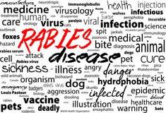 Rabbia - malattia incurabile virale degli esseri umani e degli animali Blocco di testo di parola di sanità Immagine Stock