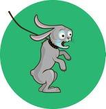 Rabbit. The spiteful rabbit is very dangerous Stock Image