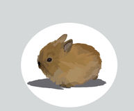 Rabbit. Image of fluffy rodent of with big ears rabbit stock illustration