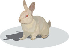 Rabbit. Image of fluffy rodent of with big ears rabbit Royalty Free Illustration