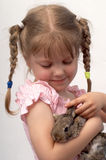 With rabbit. The girl is played with the rabbit Royalty Free Stock Images