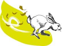 Rabbit. Illustration, vector for a running rabbit Royalty Free Stock Photo
