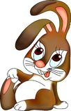 Rabbit. Small rabbit Royalty Free Stock Photo