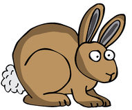 Rabbit. Brown Rabbit also in vector format