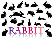 Rabbit. It is a collection of silhouettes (part 1!)Continuation look in my portfolio Royalty Free Stock Images