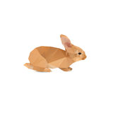 Rabbit abstract Royalty Free Stock Photography