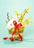 Rabbit albino Royalty Free Stock Photo