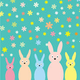 Rabbit background Royalty Free Stock Photo