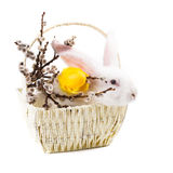 Rabbit in a basket Stock Photos