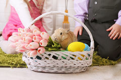 Rabbit in a basket Stock Photo
