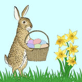 Rabbit and basket with eggs Royalty Free Stock Photos