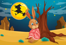 A rabbit beside a big trunk of a tree Stock Photography