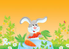 Rabbit at breakfast Stock Photography