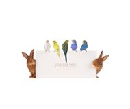 Rabbit and budgie Stock Images