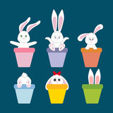 Rabbit Bunny Icon. Easter holiday. Vector illustration Stock Image